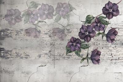 kwiatki-na-murze