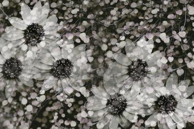 kwiatki-i-kropki