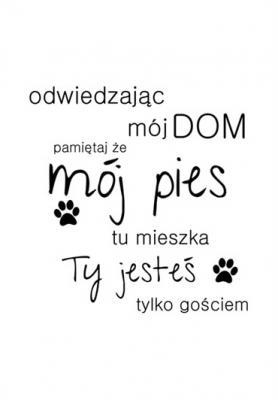 odwiedzajac-moj-dom-pamietaj-ze-moj-pies-czarno-bialy