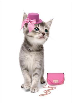 kotek-w-rozowym-kapeluszu