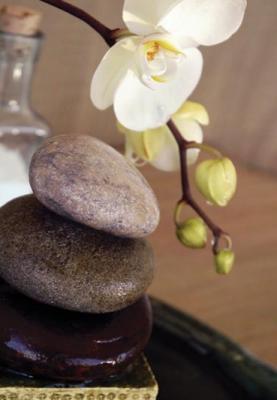 motyw-kamieni-i-kwiatka