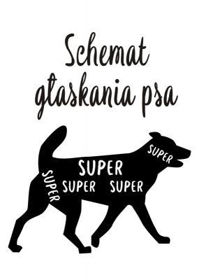 schemat-glaskania-psa