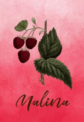 owoc-malina